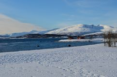 Blue sea with snowy sea shore and mountain. With red huts Stock Photography