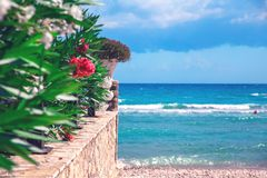 Blue sea with stone wall and flowers stock images