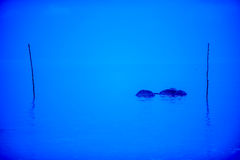 Blue Sea. A tranquil blue sea in the morning stock photography
