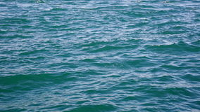 Blue sea water. Small waves on blue sea water stock video