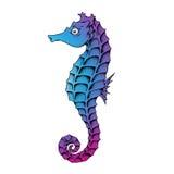 Blue Seahorse Line Art Illustration Stock Image