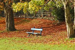 Blue seat in Autumn Stock Photography