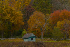 Blue Shack Fall Colors royalty free stock images