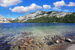 Blue shallow lake Royalty Free Stock Photo