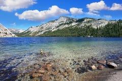 Blue shallow lake Royalty Free Stock Photo