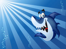 Blue shark. Funny cartoon blue shark swimming in blue ocean Royalty Free Stock Photos