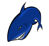 Blue shark. Illustration of a blue shark with sharp teeth Stock Photo