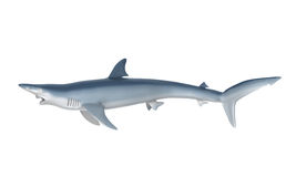 Blue Shark. Isolated on white background. 3D render Stock Images
