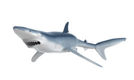 Blue Shark. Isolated on white background. 3D render Royalty Free Stock Images