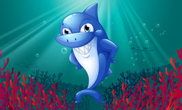 A blue shark smiling under the sea. Illustration of a blue shark smiling under the sea Royalty Free Stock Photo