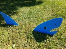 Blue shark on green grass royalty free stock photos