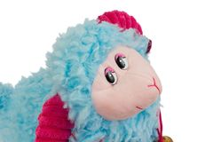 Blue sheep Stock Images