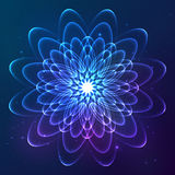 Blue shining vector cosmic flower Stock Images