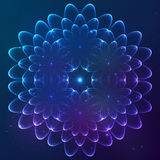 Blue shining vector cosmic flower Stock Photos