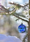 Blue Shiny Ball Spruce Winter. Blue and shiny ball on the spruce branch in the forest in very cold and snowy afternoon.Winter scene with copy space. Vertical royalty free stock images