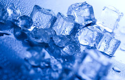 Blue and shiny ice cubes Stock Photos