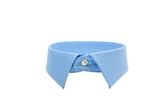 Blue shirt collar. Isolated on white background royalty free stock photography