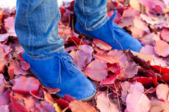 Blue shoes. Closeup of kids feet in beautiful blue suede shoes on red leaves Stock Images