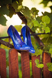 Blue shoes. On the fence Stock Image
