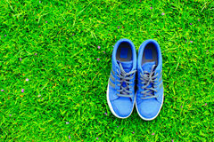 Blue shoes. In the park Royalty Free Stock Images