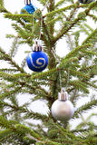 Blue and Silver Christmas Balls Hanging on a Christmas Tree Stock Photos