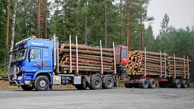 Blue Sisu Polar Timber Truck with Trailers Full of Spruce Logs Royalty Free Stock Photography