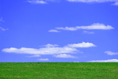 Blue skies. Blue sky above green pasture Royalty Free Stock Image