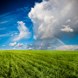 Blue skies above green field Royalty Free Stock Image