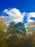 Blue skies. Clear crisp day Stock Photography