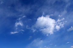 Blue skies and clouds. Blue skies with flying bird Stock Photography