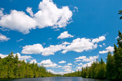 Blue skies and Clouds in the North Woods Stock Images