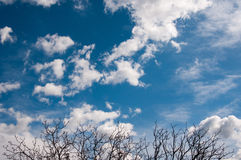 Blue skies and cumulonimbus Royalty Free Stock Photography