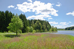 Blue skies at the lake. Summer day with blue skies at the lake Stock Image