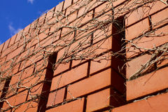Blue skies over brick wall Royalty Free Stock Images