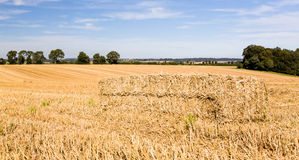 Blue skies over corn fields in England. Dramatic blue sky and clouds over harvested corn in Cotswolds in England Stock Photography