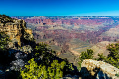 Blue Skies Over the South Rim of the Grand Canyon Stock Images