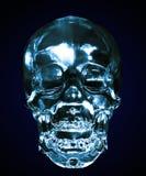 Blue Skull Stock Photography