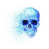 Blue skull Stock Image