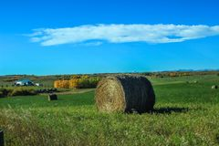 Blue sky above a hay field. Hay bales, Foothills, Alberta, Canada royalty free stock image
