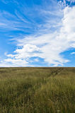 Blue sky above hill covered with dry prairie grass in Pester plateau Royalty Free Stock Photos