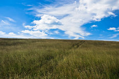 Blue sky above hill covered with dry prairie grass in Pester plateau Royalty Free Stock Photo