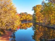 Blue Sky Autumn Pond Royalty Free Stock Photos