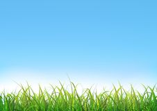 Blue Sky Background With Green Grass. Illustration of a blue sky landscape with green grass leaves and lawn at the foreground Royalty Free Stock Photo