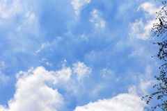Blue sky background. Blue sky with green leaf on the right side royalty free stock photos