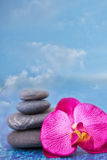 Blue sky, balanced stones and orchid Stock Photo
