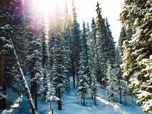 Blue Sky Basin royalty free stock photo