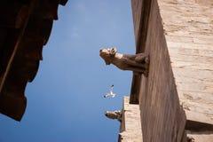 Blue sky with bird between the wall with gargoyles. Horizontal Stock Photo