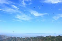 Blue sky with birds stock photography