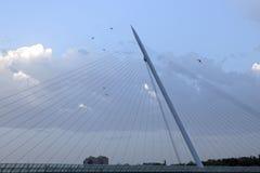 Blue sky with birds near a bridge in Saragossa Stock Photos