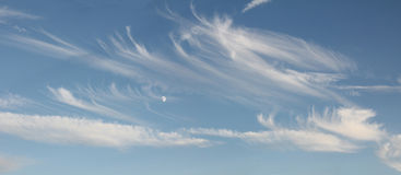 Blue sky with cirrus clouds and moon Royalty Free Stock Image